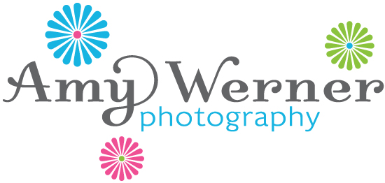 Amy Werner Photography Logo